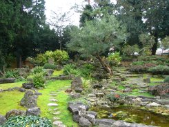 Japanese garden, Schönbrunn