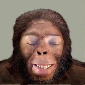 An Early Human