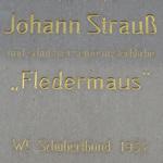 Strauss plaque